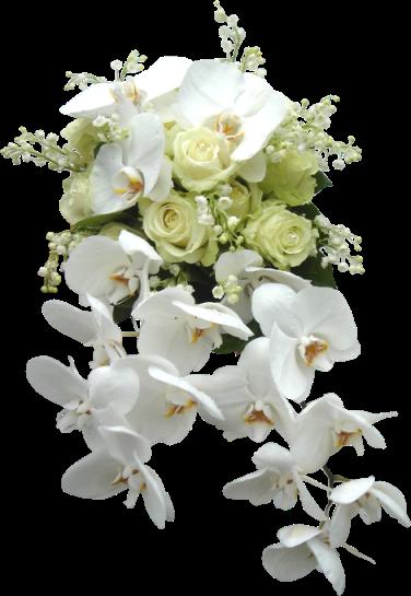 """Képtalálat a következőre: """"szép virágok"""""""
