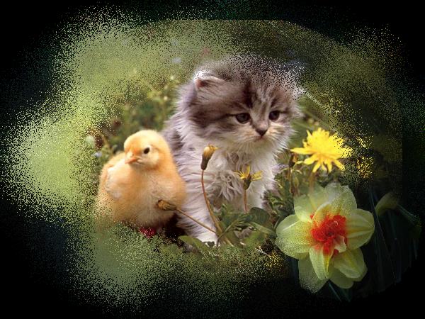 Us et Coutumes .... en route vers Pâques