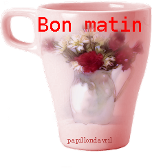  bon matin