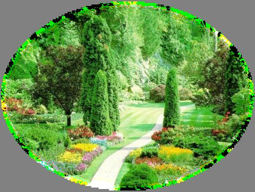 mes tubes jardin