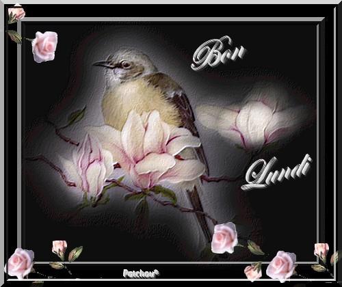 bonjour - Page 3 5e3ab5b0