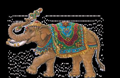 gifs éléphants