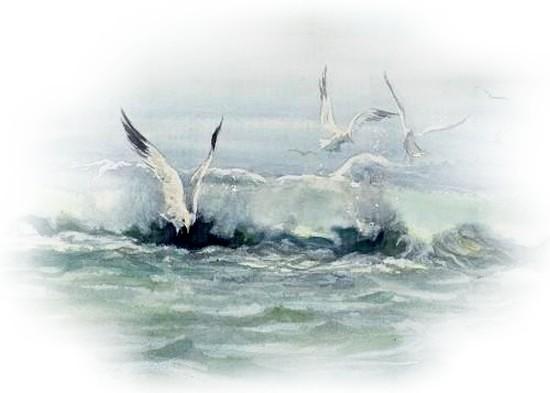 tubes mer