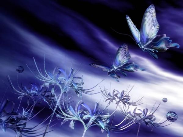 dans fond ecran papillon a1c5e28b