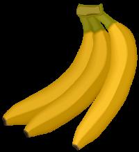 tubes fruits d hiver