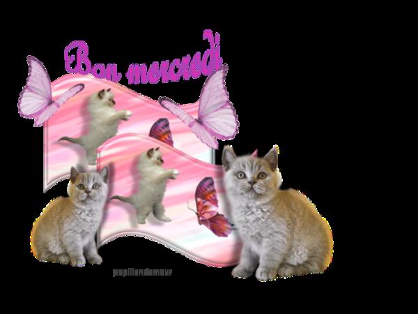 Bonjour, bonsoir..... - Page 4 Dd9701d0