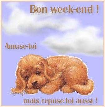 Bonjour, bonsoir et bonne nuit. - Page 4 F45506c3