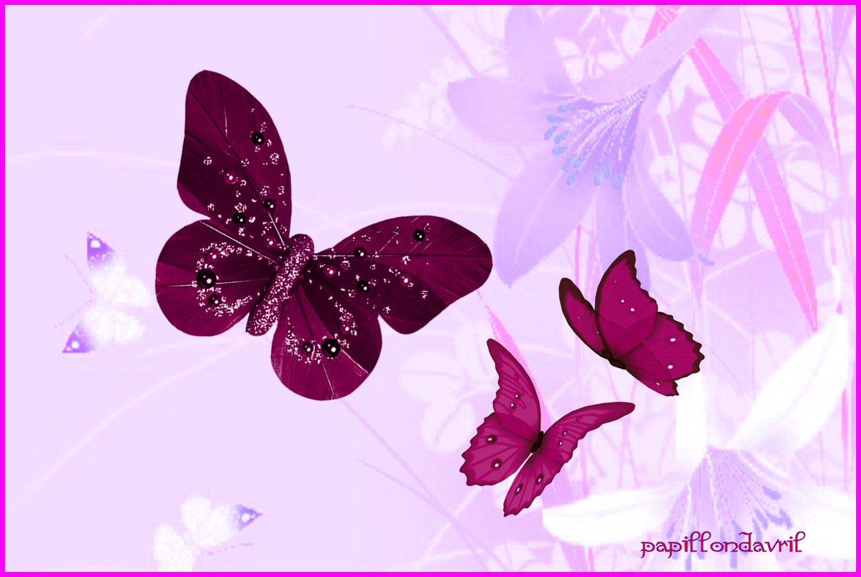 Fonds ecran papillons page 3 for Fond ecran papillon