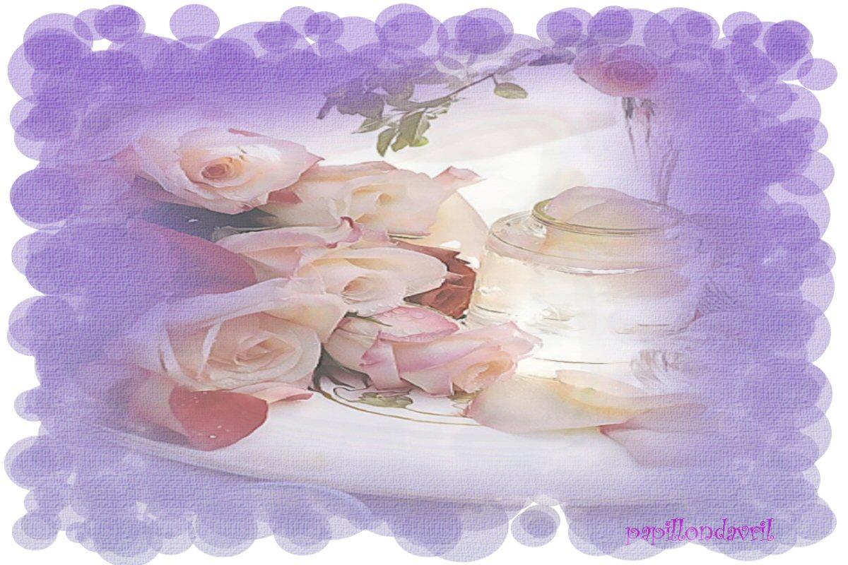 Fonds d ecran avec roses page 5 for Fond ecran rose