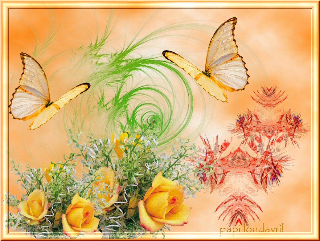 Papillon anime page 2 for Concime per gerani fatto in casa