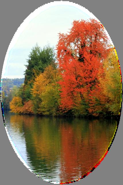 Mes tubes paysages d automne - Images d automne gratuites ...
