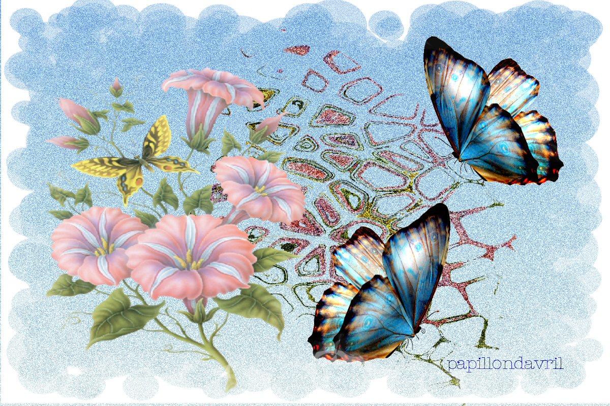 Fonds ecran papillons page 7 for Fond ecran papillon